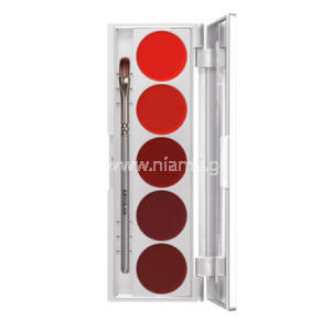 LIP ROUGE SET 5 XΡΩΜΑΤΑ